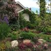 Frontyard-Spring